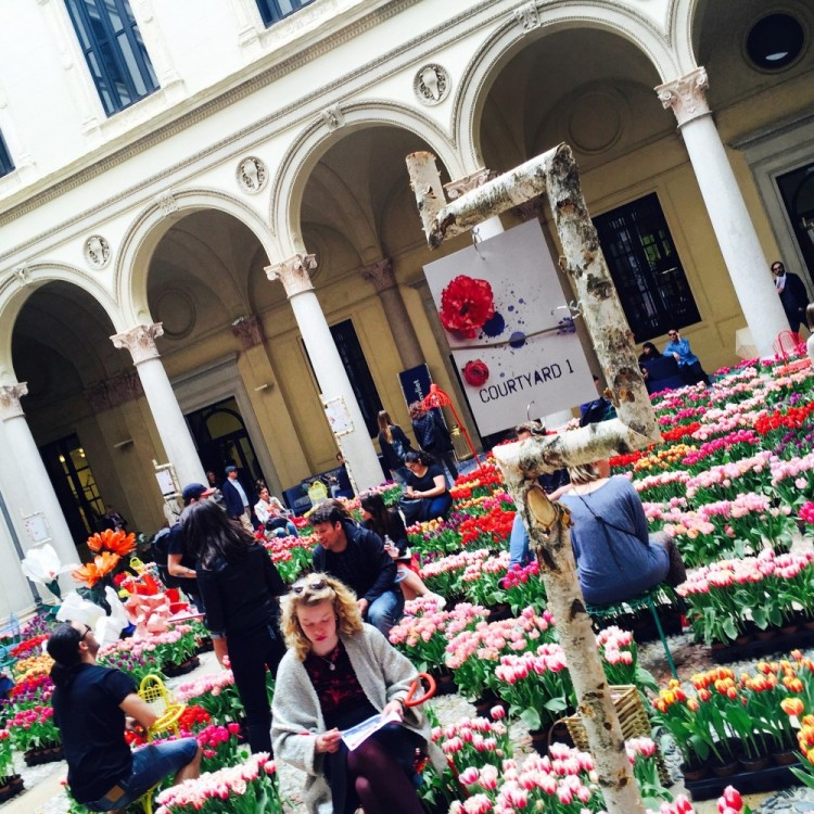 15.000 tulips color the courtyard